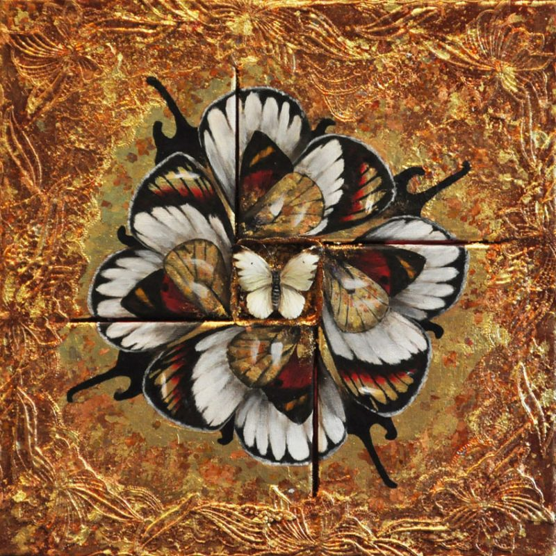 Βutterfly Flower (43x43cm) mixed media on canvas